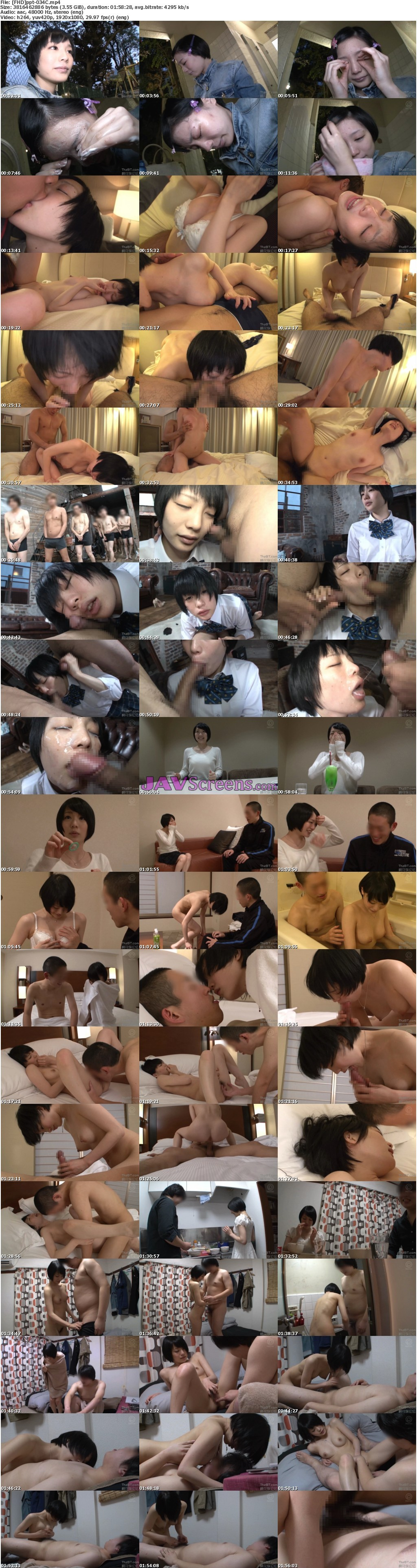 PPT-034C.jpg - JAV Screenshot