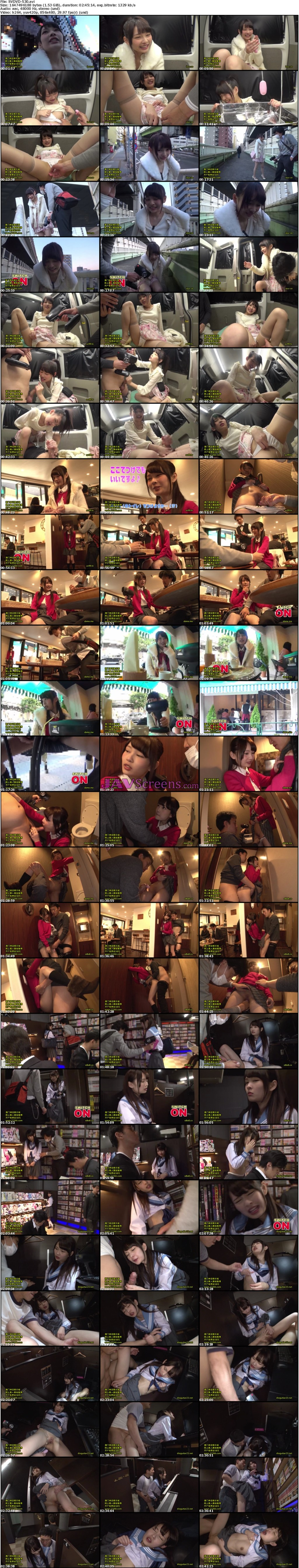 SVDVD-530.jpg - JAV Screenshot