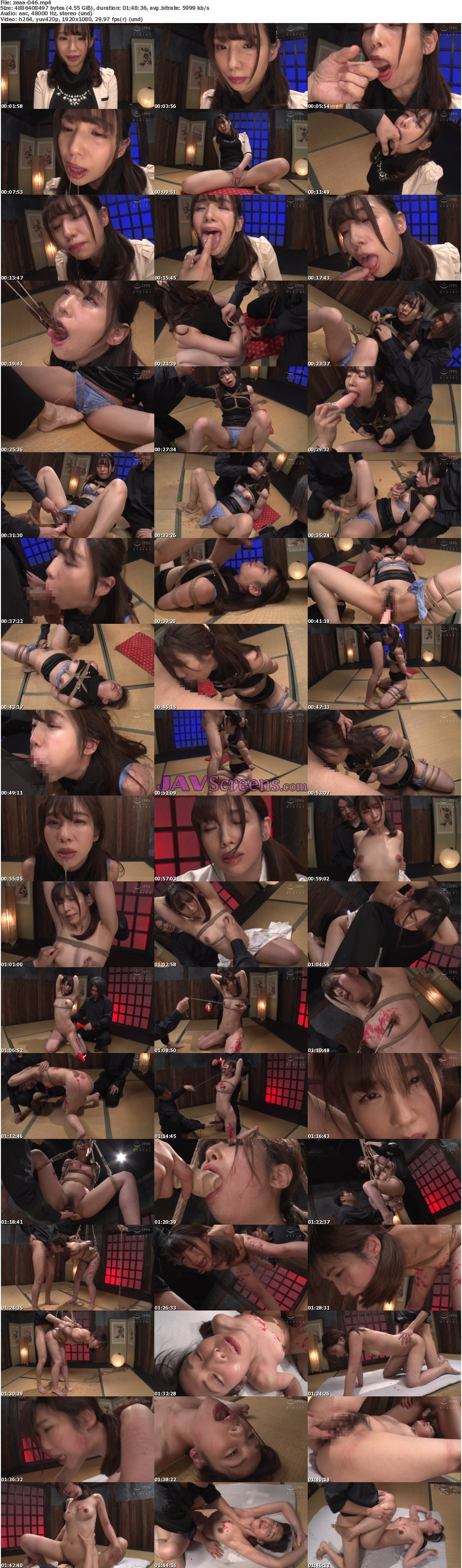 ZEAA-46.jpg - JAV Screenshot